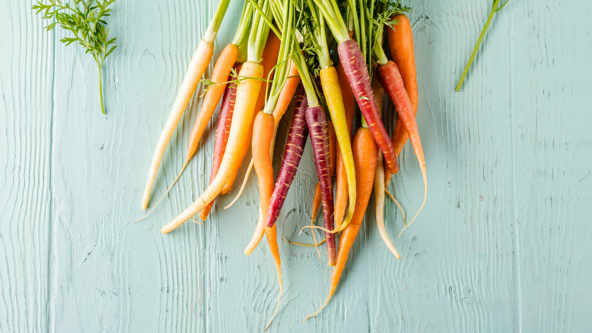 zanahorias, ensaladas Isabel