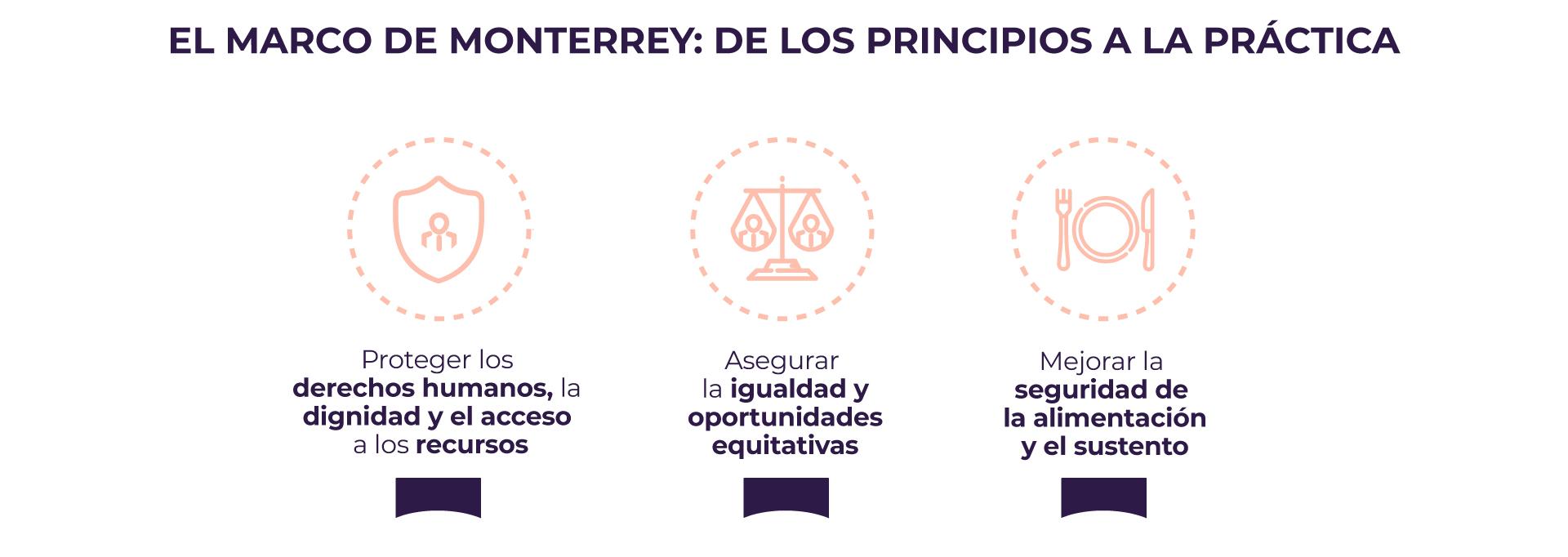 Marco de Monterrey