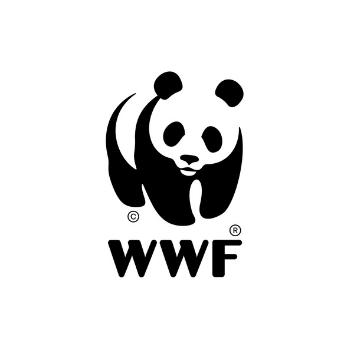 Logo WWF 21